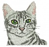Embroidery Digitizer-cat.jpg