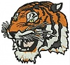 Embroidery digitizing-tiger.jpg